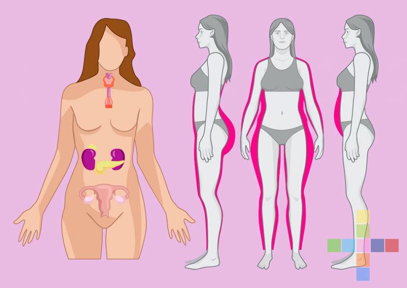 Повышены женские гормоны в 52 года