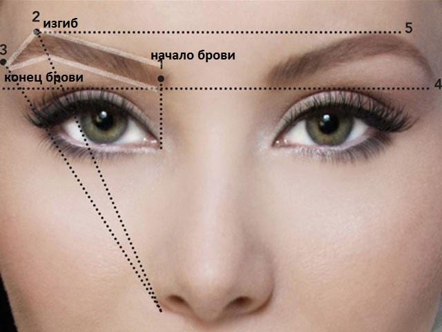 Перещипанные брови: как восстановить