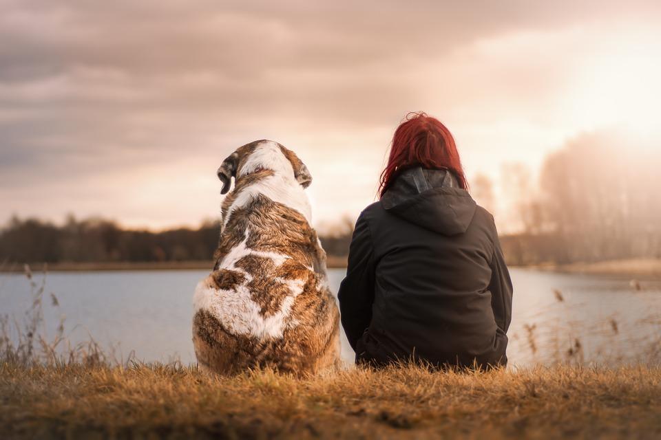 Выбранный пес расскажет какой мужчина для вас идеален